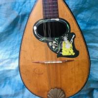 Kapotte mandoline